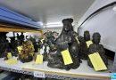 #11 Exposer les riches collections du Musée d'Histoire Naturelle de Lille
