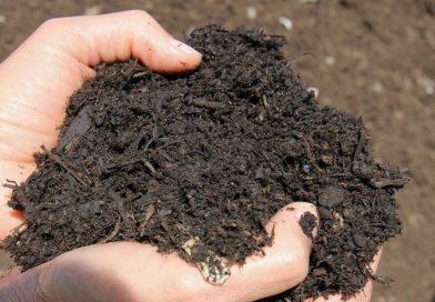 #20 Une politique de compostage à l'échelle de la métropole lilloise